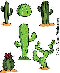kaktus, zbiór