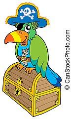 kalóz, papagáj, ülés, képben látható, láda