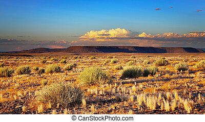 kalahari, pôr do sol, deserto