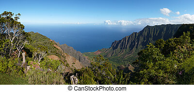 Wide angle view of the Kalalau Valley along the Na Pali Coast on the north shore of Kauai, Hawaii