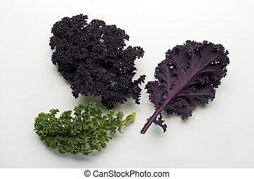 Kale leaf - Fresh kale leaf on white background close up