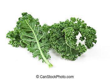 Kale on white background