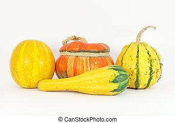 Kalebasser, färgrik
