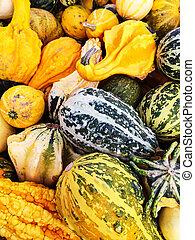 Kalebasser, marknaden, färgrik, ombyte