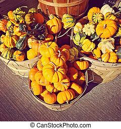 Kalebasser, Pumpor, marknaden, korgar