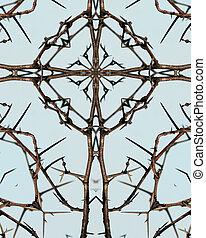 kaleidoscope cross: thorny locust 3 - kaleidoscope cross:...