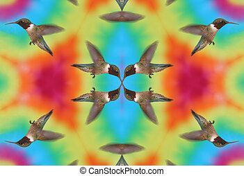 Kaleidoscopic Hummingbird - Kaleidoscopic Ruby-throated...