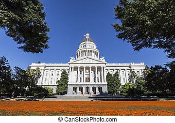 kalifornien, kapitol gebäude, mit, mohnblumen