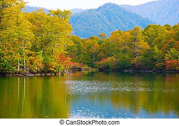 kamaike, damm, joshinetsu, kogen, nationalparken, japan.