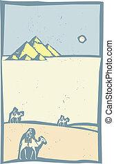 kamelen, woestijn