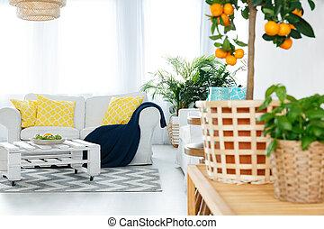 kamer, met, planten