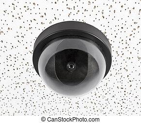 kamera security, på, akustisk flise, loft