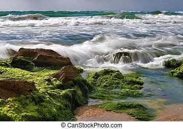 kamień, fale przybrzeżne