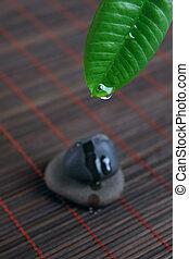 kamień, liść, kropla, woda, zielony, zdrój