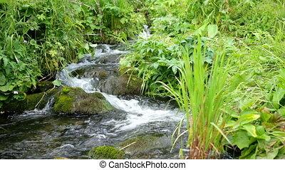 kamienie, górski potok, potoki