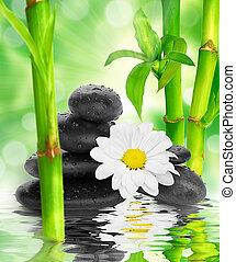 kamienie, -, woda, czarne tło, zdrój, bambus
