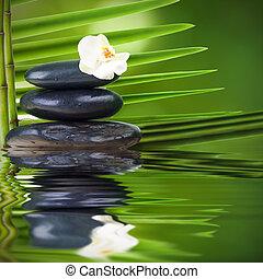 kamienie, woda, i, liście, zdrój