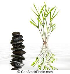 kamienie, zdrój, bambus, trawa