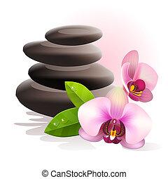 kamienie, zdrój, kwiaty