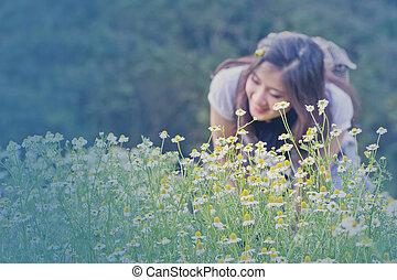 kamomill, flowers., årgång, style.