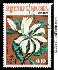 KAMPUCHEA-CIRCA 1984: A stamp printed in the Cambodia, ...