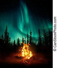 kampvuur, in, de, wildernis, met, de, noorderlicht