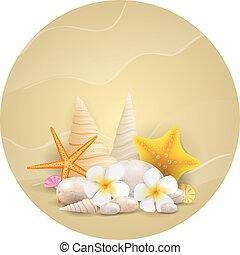kamyki, kwiaty, rozgwiazdy, okrągły, tło