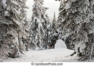 kanada, höjande, terräng, vinter, snö