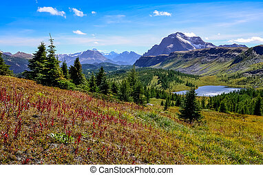 kanada, hegyek, banff, színpadi, nemzeti park, kilátás