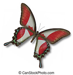 kanada kennzeichen, auf, papillon