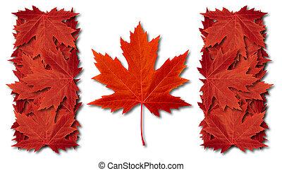 kanada, levél növényen, lobogó