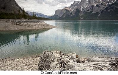 kanada, np, banff, överse, minnewanka, insjö, scenic beskåda