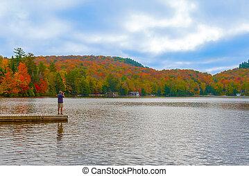 kanada, ontario, park, panoramisch, algonquin, ansicht