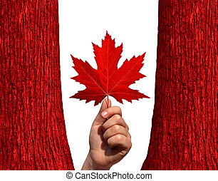 kanadai, ősz