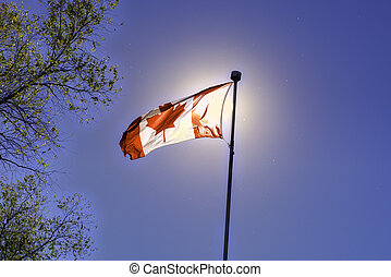 kanadische markierung, winkt, gegen, blauer himmel
