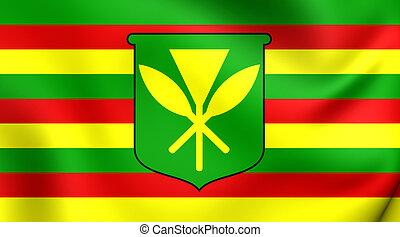 Kanaka Maoli Flag, Hawaii. Close Up.