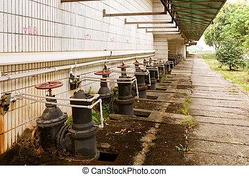kanalizacyjne leczenie roślina, ćwierkanie