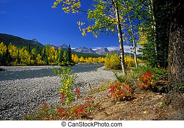 Just along the Highwood River is one of our favourite picnic stops which puts on a very fine Autumn colour display in mid September. The big blue Alberta sky helped out as well.