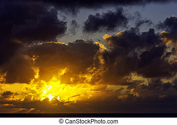 kanariefugl, atlantiskt ocean, hen, solopgang, lanzarote, øer, -, spanien