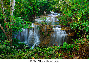 kanchanaburi, thaïlande, chute eau, forêt, profond