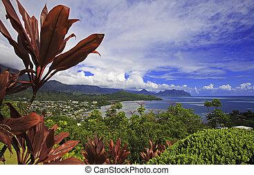 kaneohe, isla, oahu, hawai, bahía