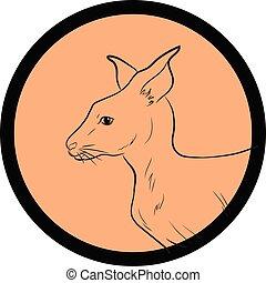 Kangaroo Face Closeup Vector