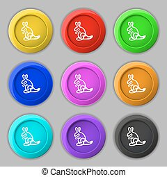 Kangaroo Icon sign. symbol on nine round colourful buttons. Vector