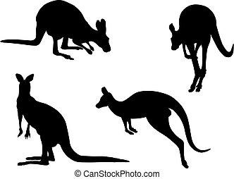 Kangaroo - Abstract vector illustration of kangaroo