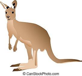 Kangaroo isolated against a white background. Australian...