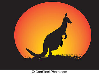 kangaroo in a moon circle