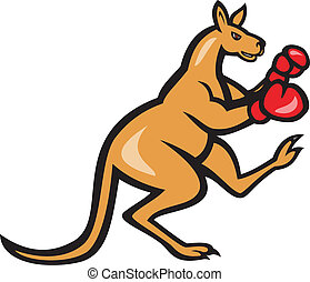 Kangaroo Kick Boxer Boxing Cartoon - Illustration of a ...