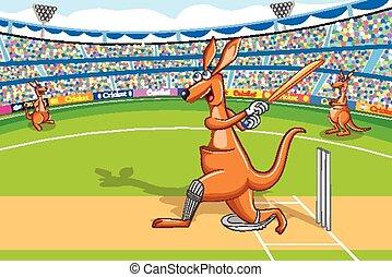 Kangaroo playing cricket - vector illustration of kangaroo...