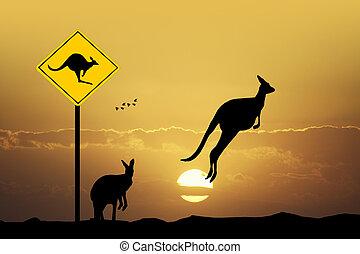 Kangaroo sign caution - illustration of kangaroo sign ...