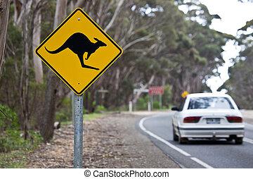 Kangaroo sign on a road
